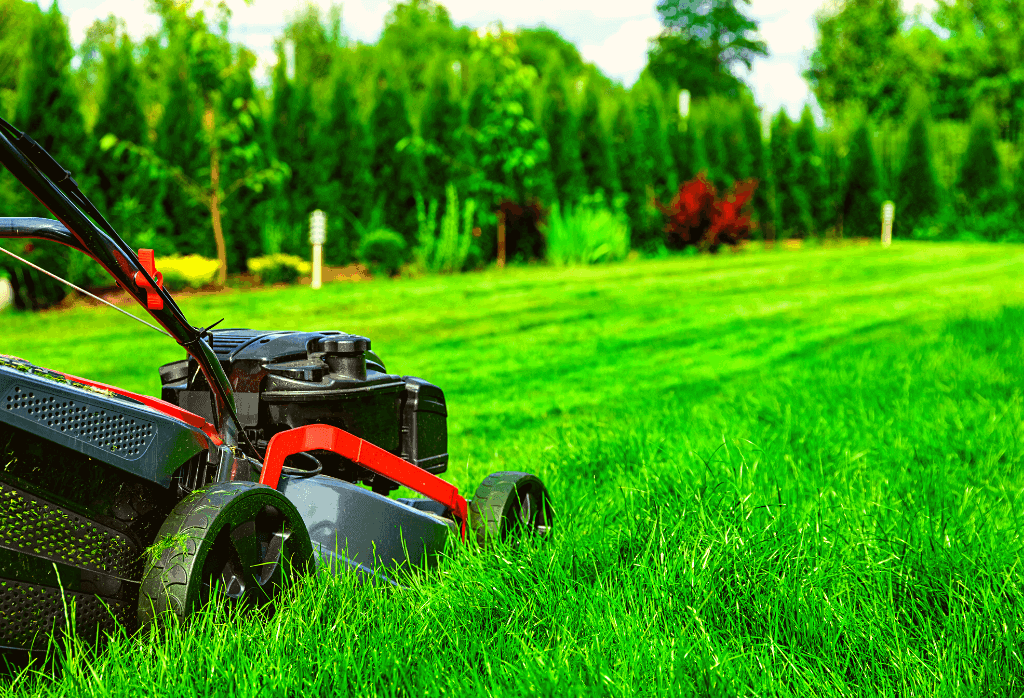 Common Lawn Mowing Mistakes