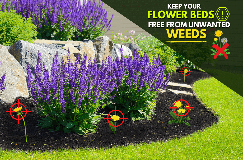 Landscape Bed Weed Control