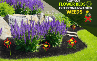 Flower Bed Weed Control By ExperiGreen