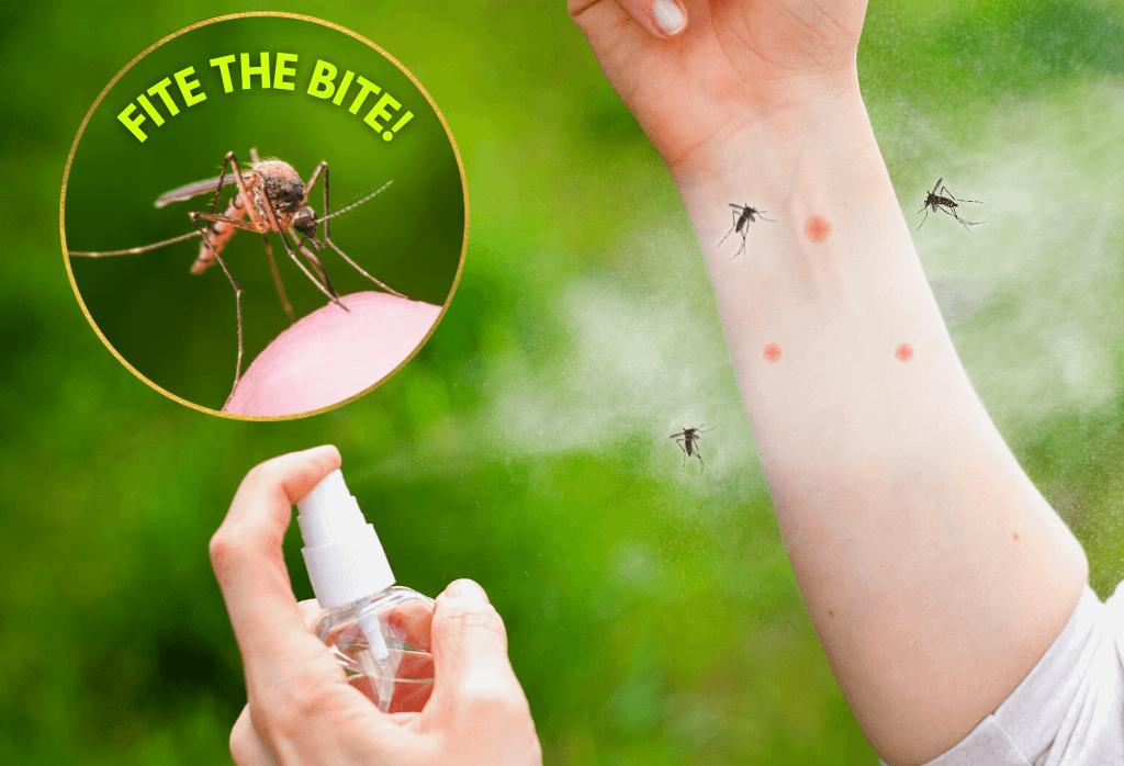 Get ExperiGreen's Outdoor Mosquito Control Program