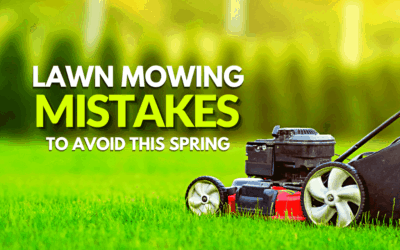 Lawn Mowing Mistakes To Avoid This Summer