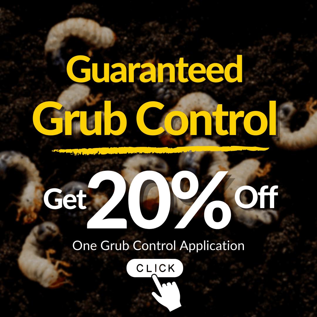 Grub Control Offer