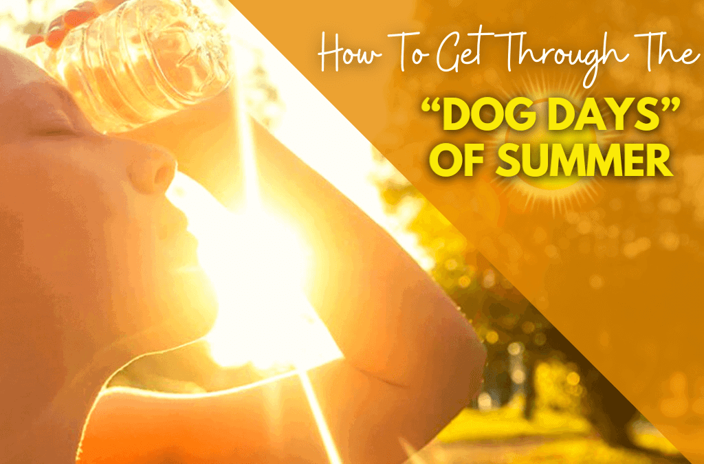 How To Get Through The 'Dog Days' Of Summer