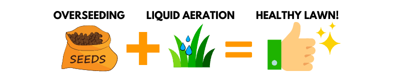 Combine overseeding with liquid aeration for optimal results