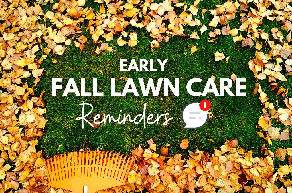 Early Fall Lawn Care Reminders