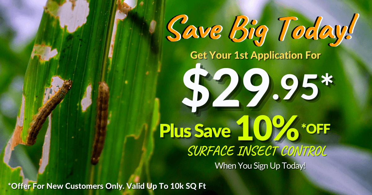 Armyworm Control Special Offer
