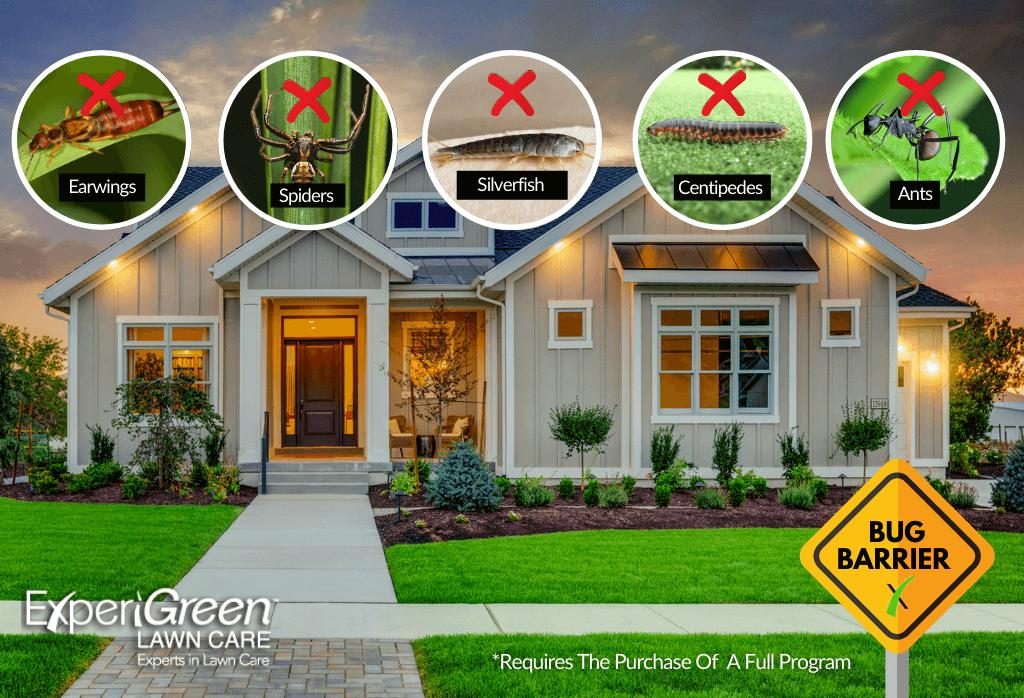 ExperiGreen Lawn Perimeter Pest Control Program