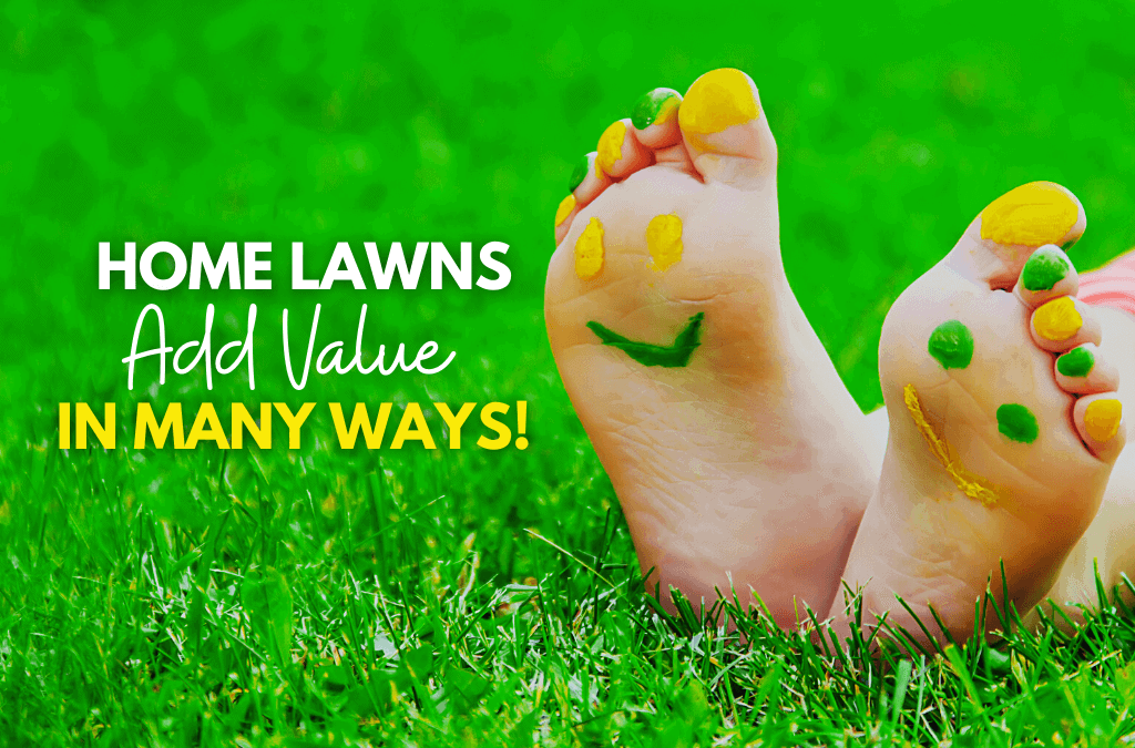 Home Lawns Add Value In Many Ways